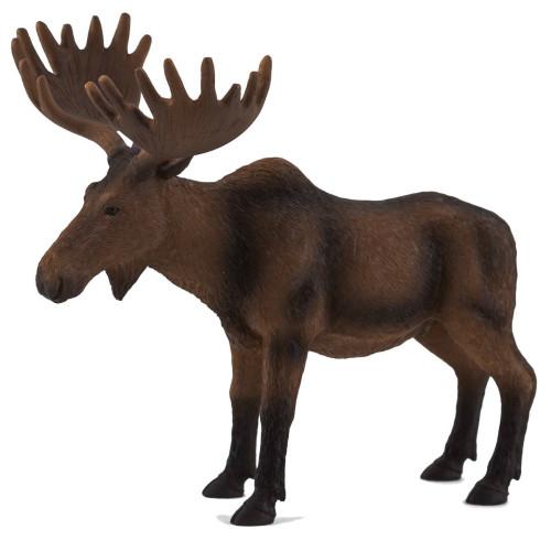 Mojo Moose