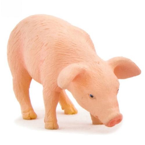 Mojo Piglet Feeding
