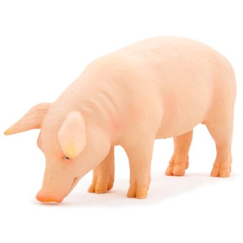 Mojo Pig Boar