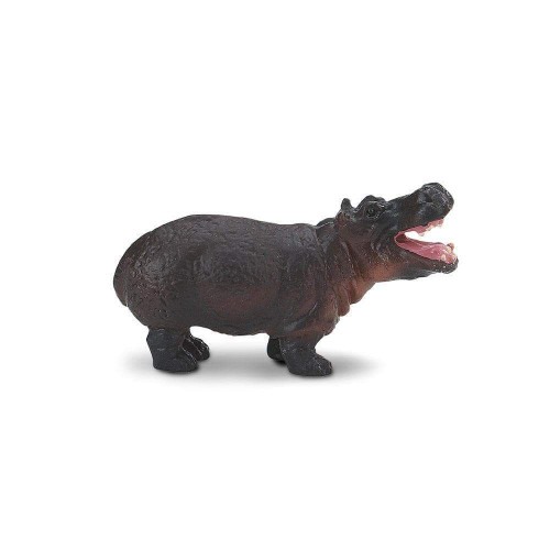 Safari Ltd Mini Hippos