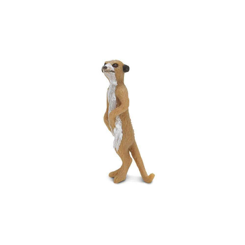Safari Ltd Mini Meerkats