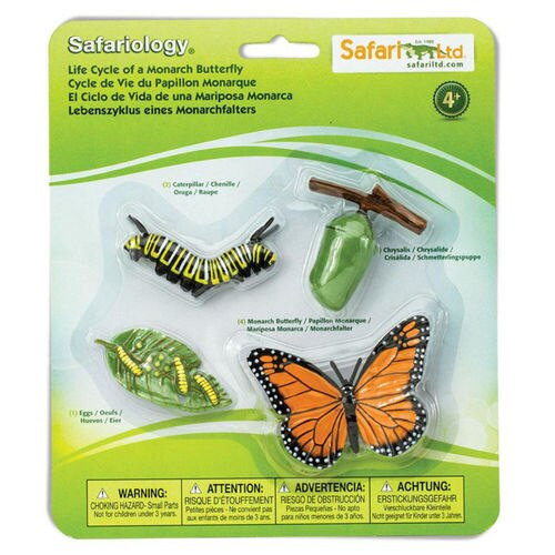 Safari Ltd Life Cycle of a Monarch Butterfly