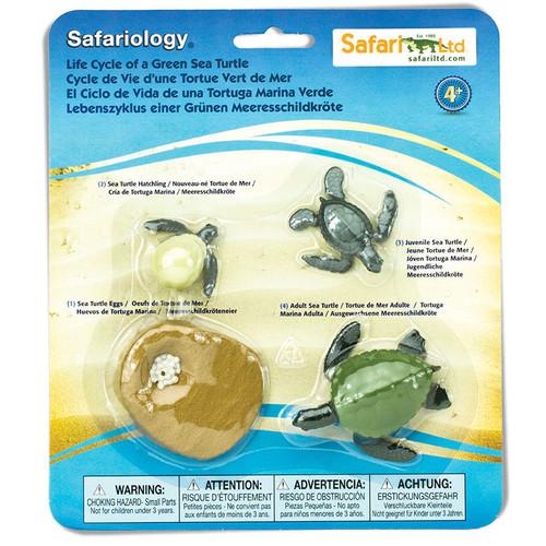 Safari Ltd Life Cycle of a Green Sea Turtle