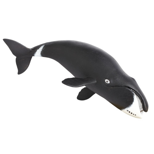 Safari Ltd Bowhead Whale