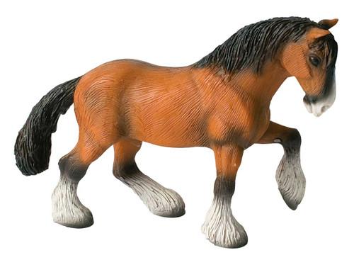 Shire Horse Gelding