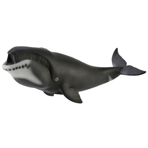 CollectA Bowhead Whale