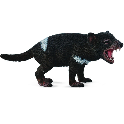 CollectA Tasmanian Devil