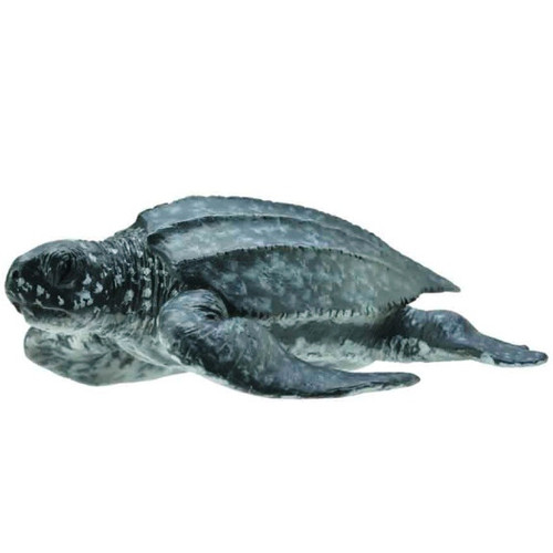 CollectA Leatherback Sea Turtle