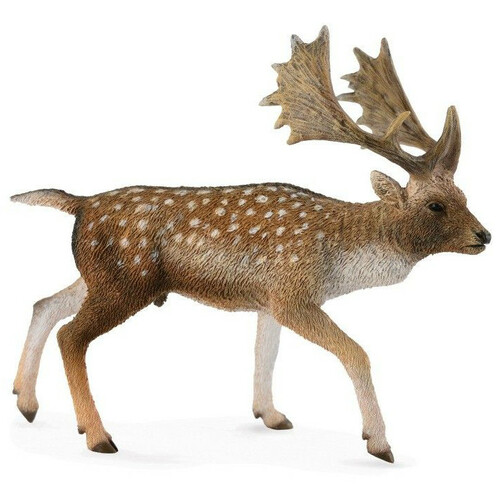 CollectA Fallow Deer Male