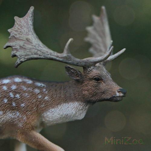 CollectA Fallow Deer Male