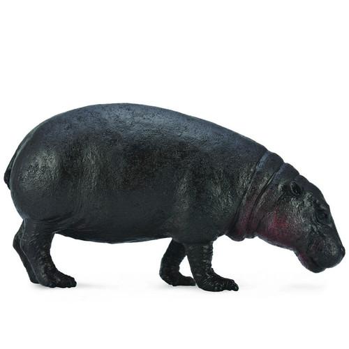 CollectA Pygmy Hippopotamus