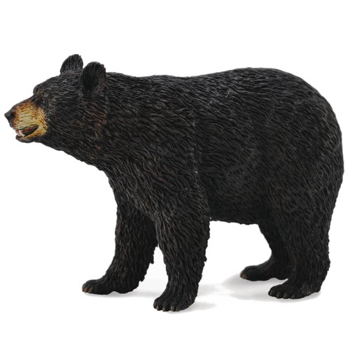 CollectA American Black Bear