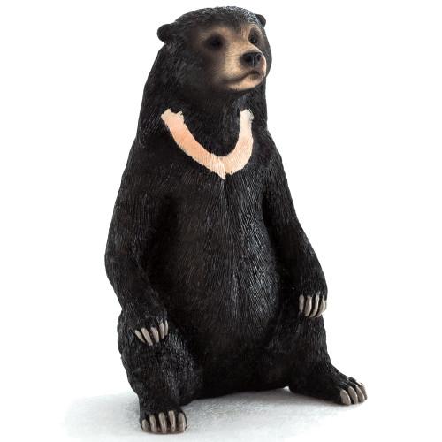 Mojo Sun Bear