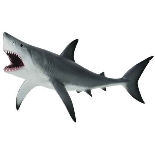 CollectA Great White Shark