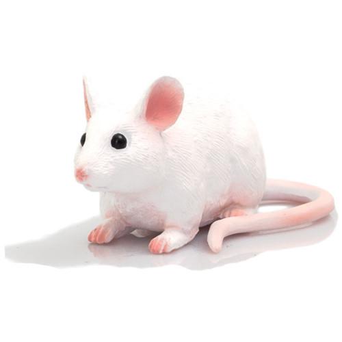 Mojo Mouse