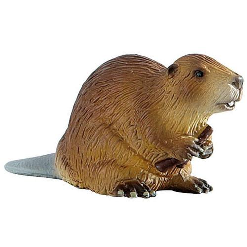Beaver 2015
