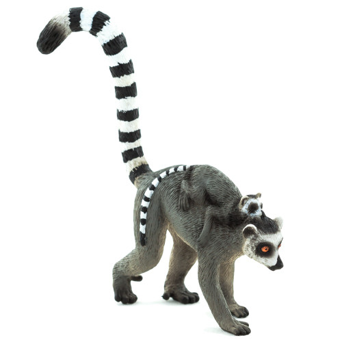 Mojo Ringtail Lemur with Baby