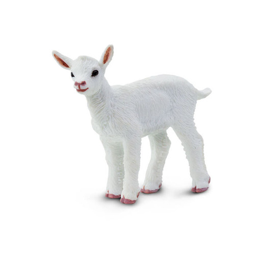 Safari Ltd Goat Kid