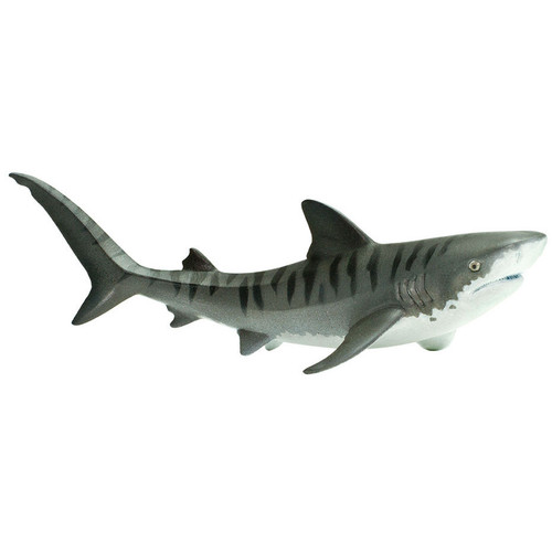 Safari Ltd Tiger Shark