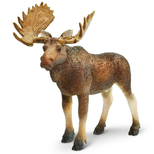 Safari Ltd Moose Bull 2015