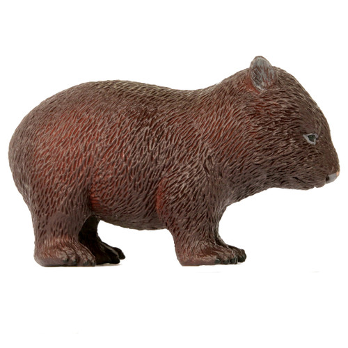 Science and Nature Large Wombat