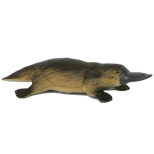 Science and Nature Large Platypus