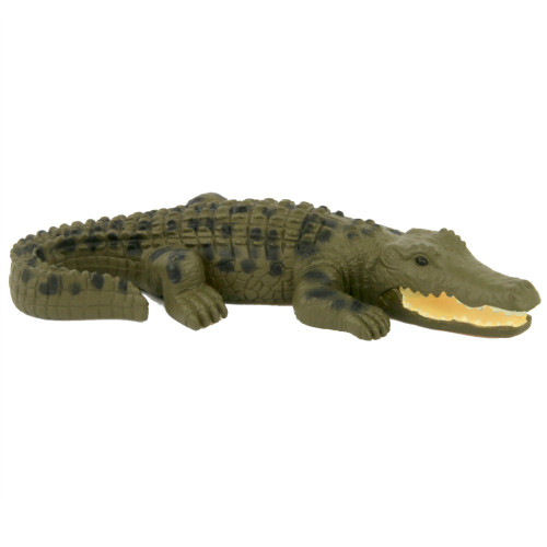Small Crocodile