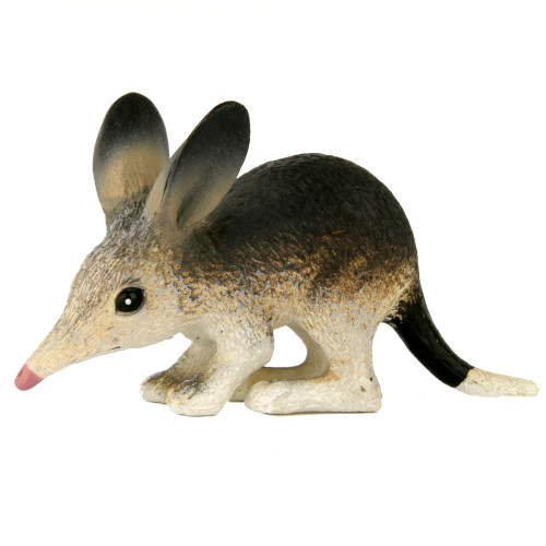 Science and Nature Small Bilby