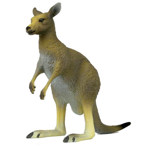 Science and Nature Large Kangaroo
