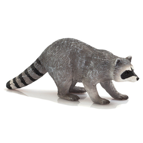 Mojo Raccoon