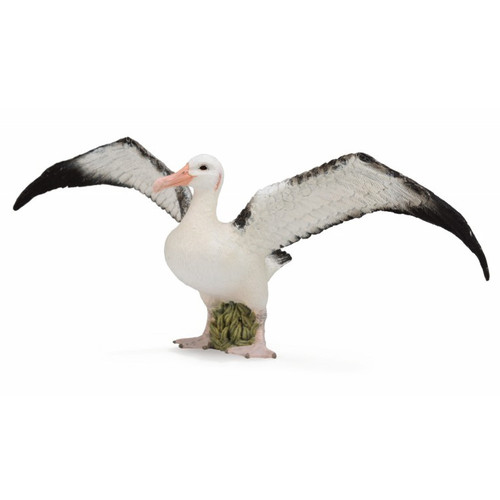 CollectA Wandering Albatross