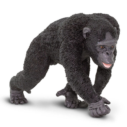 Safari Ltd Chimpanzee