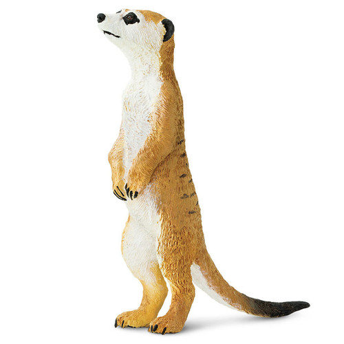 Safari Ltd Meerkat