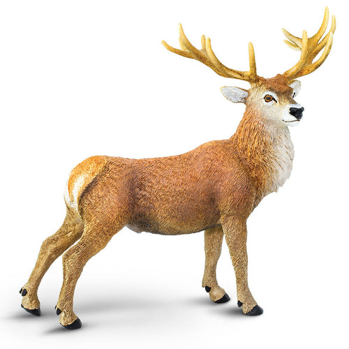 Safari Ltd Red Deer Buck