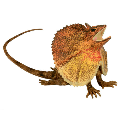 Science and Nature Large Frill Necked Lizard