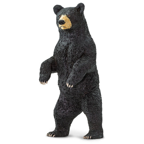 Safari Ltd Black Bear Standing