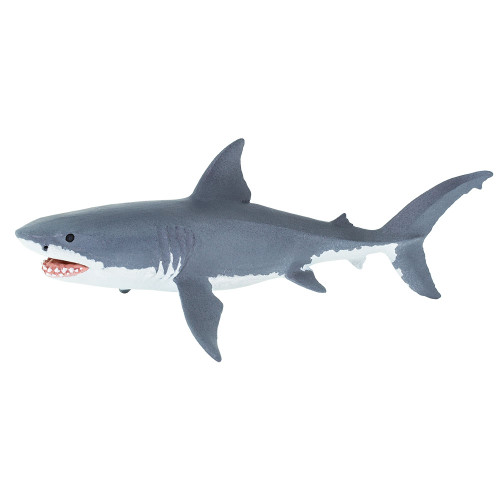 Safari Ltd  Great White Shark