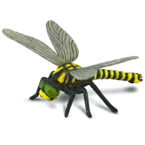 CollectA Golden Ringed Dragonfly