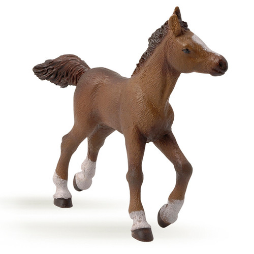 Papo Anglo Arab Foal