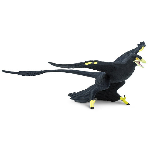 Safari Ltd Microraptor