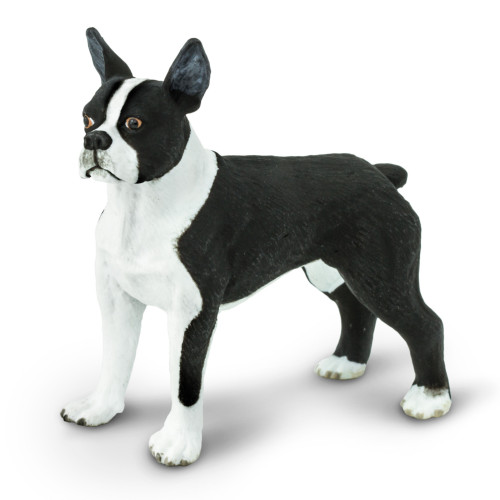 Safari Ltd Boston Terrier