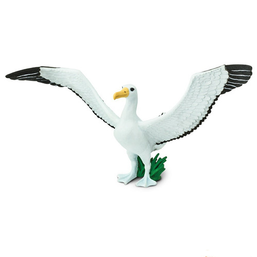 Safari Ltd Giant Albatross