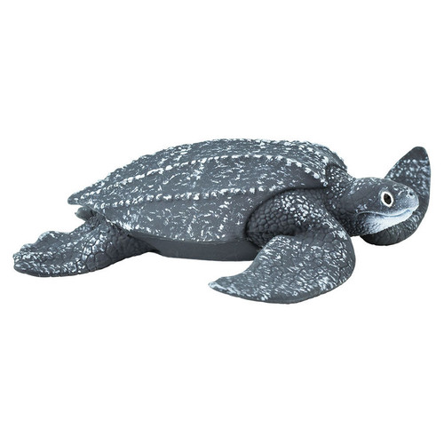 Safari Ltd Leatherback Sea Turtle