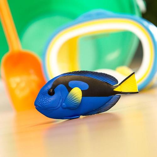 Safari Ltd Blue Tang IC