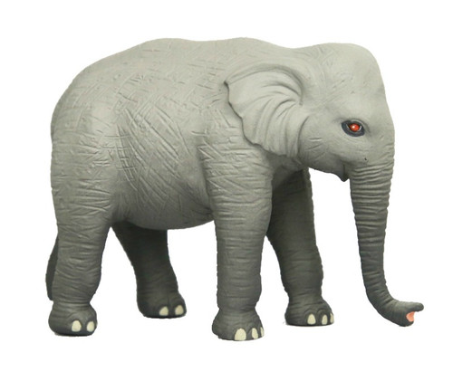 Science and Nature Elephant