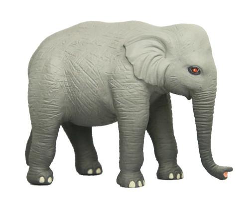 Elephant SN