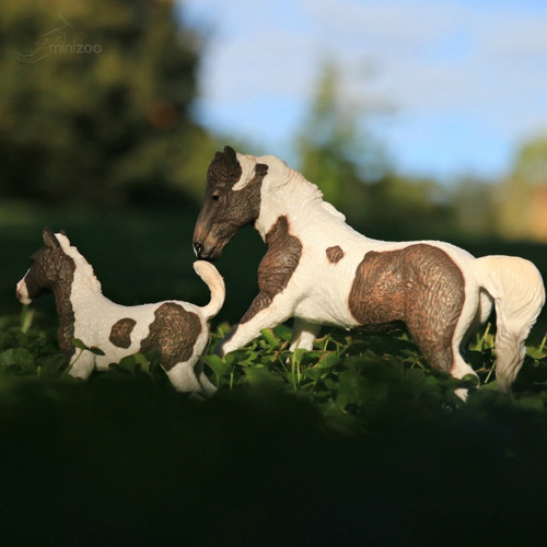 Curly Foal CollectA