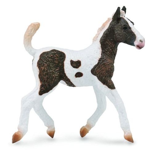 CollectA Curly Foal