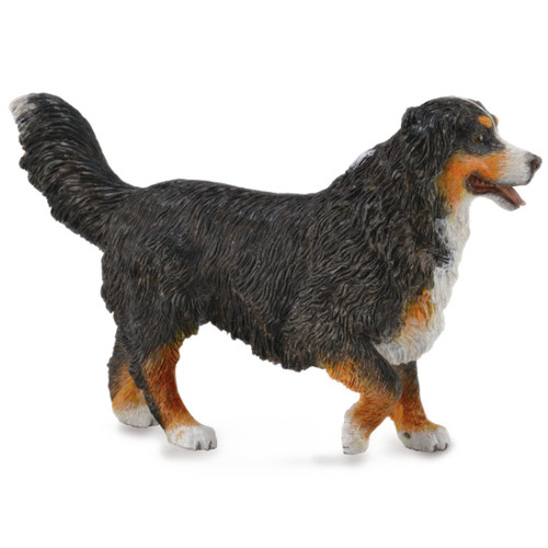 CollectA Bernese Mountain Dog