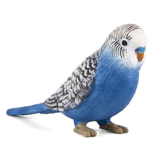 Mojo Blue Budgerigar